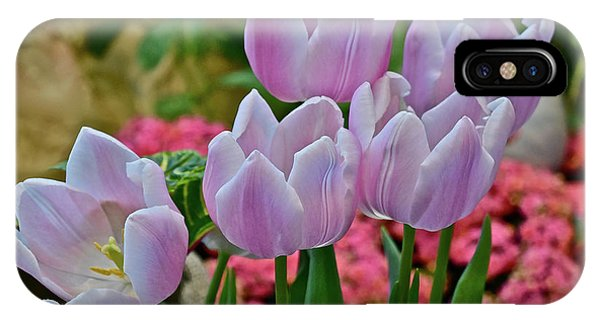 IPhone Case featuring the photograph Spring Show 18 Pink Tulips And Montego Rose Snapdragons by Janis Nussbaum Senungetuk
