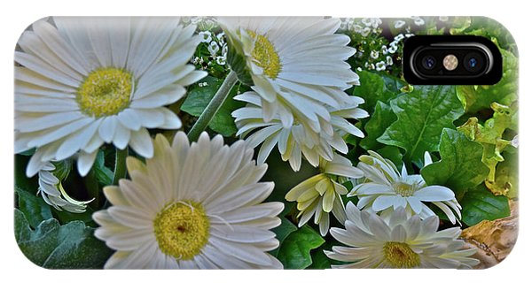 IPhone Case featuring the photograph Spring Show 18 White Gerbera Daisies by Janis Nussbaum Senungetuk