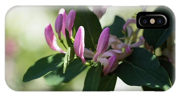 IPhone Case featuring the photograph Spring Shrub With Pink Flowers by Cristina Stefan