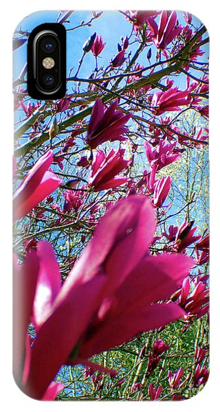 Spring Sky IPhone Case