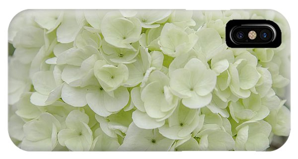 Battery D iPhone Case - Spring Snowball by Anita Faye