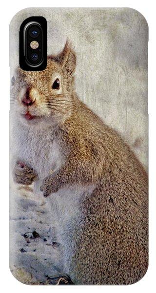 Spring Squirrel IPhone Case
