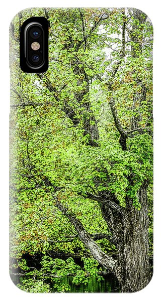 Spring Time By The River IPhone Case