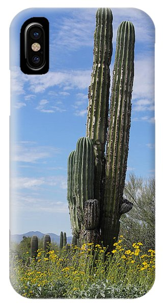 Spring Time In Tucson IPhone Case