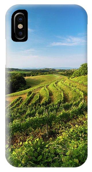 Spring Vinyard IPhone Case