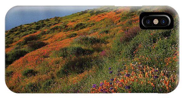 Spring Wildflower Season At Diamond Lake In California IPhone Case