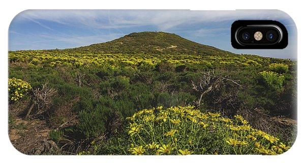 Spring Wildflowers Blooming In Malibu IPhone Case