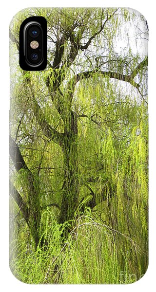 Spring Willow IPhone Case