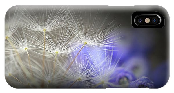 Spring Wishes IPhone Case