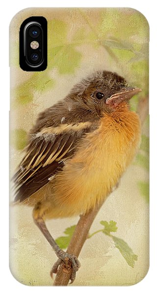 Spring's Sweet Song IPhone Case