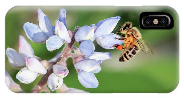 Springtime I IPhone Case