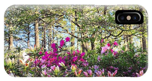 Springtime In Carolina IPhone Case