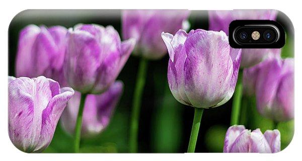 Springtime In Stratford IPhone Case