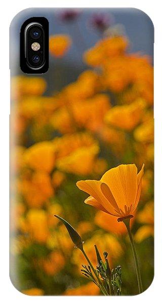 iPhone Case - Springtime Poppies by April Bielefeldt