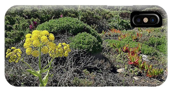 Springtime Wildflowers Along Coastal Hiking Trail - Portugal Phone Case by Connie Sue White