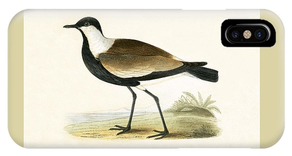 Spur Winged Plover IPhone Case