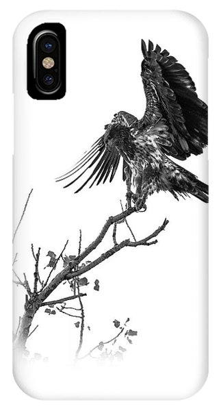 Squaw Creek Red-tail IPhone Case