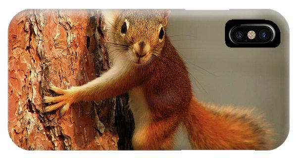 Squirrel  1920x1200 009 IPhone Case