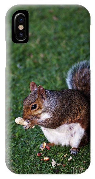 Squirrel Eating IPhone Case