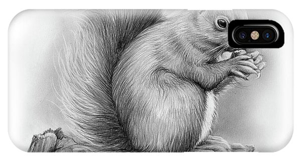 Squirrel iPhone Case - Squirrel by Greg Joens
