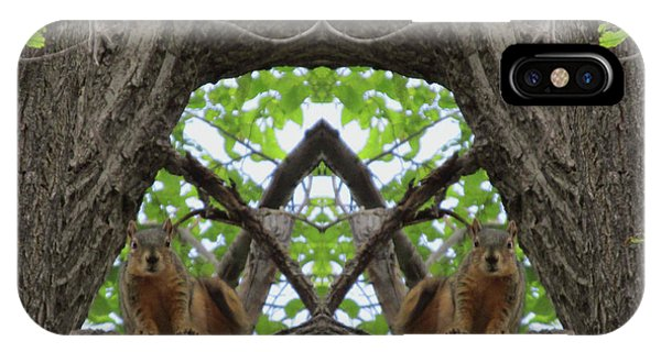 Squirrel Guardians Of The Doorway To A Green World IPhone Case