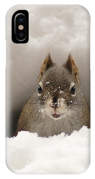 Squirrel In A Snow Tunnel IPhone Case