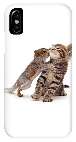 Squirrel Kiss IPhone Case