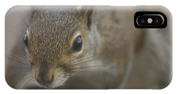 Squirrel On The Hunt Phone Case by Anthony Towers