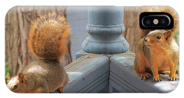 Squirrels Balancing On A Railing IPhone Case