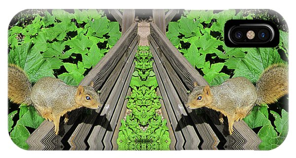 Squirrels On Fence In Surreal World IPhone Case