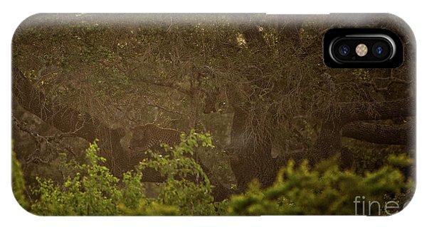 Sri Lankan Leopard  IPhone Case