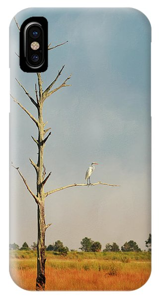 Wakulla iPhone Case - St. Marks Sentinel by Carla Parris