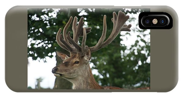 Stag Head. IPhone Case