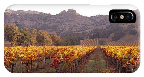 Stag iPhone Case - Stags Leap Wine Cellars Napa by Panoramic Images