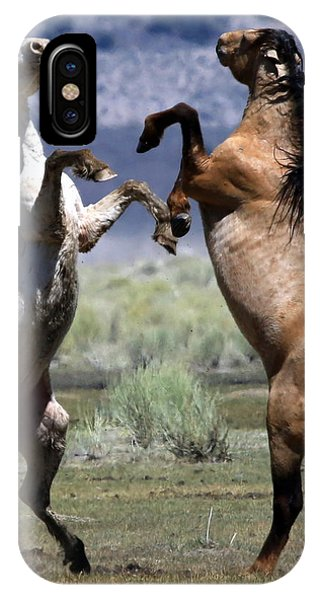 Stallion Fandango IPhone Case