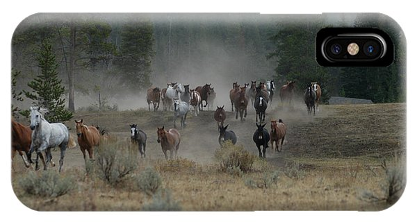 Stampede IPhone Case