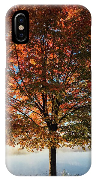 Autumn iPhone Case - Stand Tall by Aaron Burden