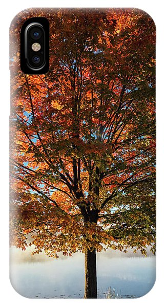 Autumn iPhone X Case - Stand Tall by Aaron Burden