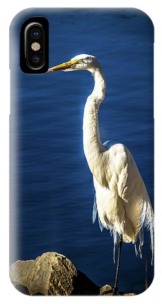 Standing Proud IPhone Case