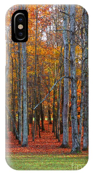 Standing Tall On The Natchez Trace IPhone Case