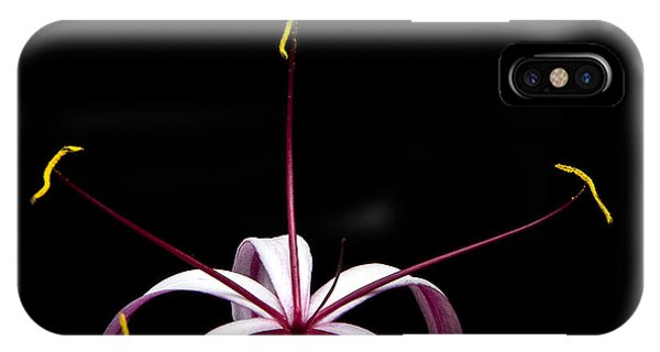IPhone Case featuring the photograph Star Flower by Ken Barrett