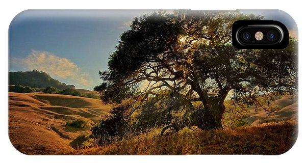Starlight, California Oak IPhone Case