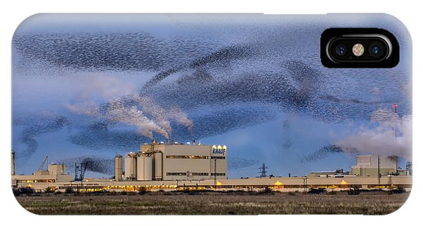Starlings iPhone Case - Starling Mumuration by Ian Hufton