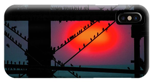 Starlings Against The Setting Sun IPhone Case