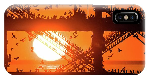 Starlings At Sunset Under Aberystwyth Pier IPhone Case