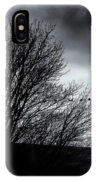 Starlings Roost IPhone Case