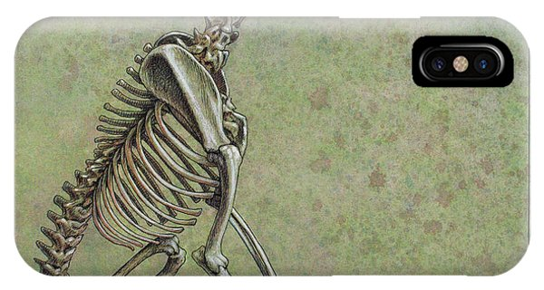 Bone iPhone Case - Stay... by James W Johnson