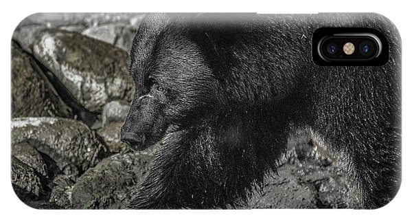 Stepping Into The Creek Black Bear IPhone Case