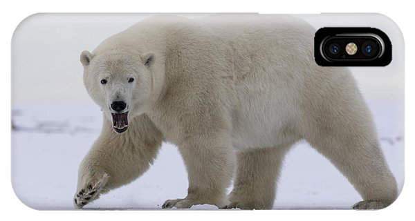 Stepping Out In The Arctic IPhone Case