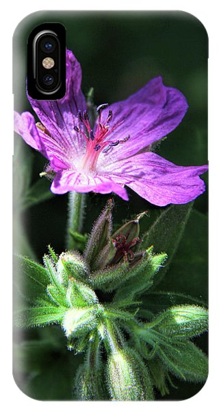 IPhone Case featuring the photograph Sticky Purple Geranium Wildflower by Jennie Marie Schell